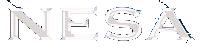 nesa vision logo